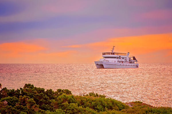 The Eco Abrolhos