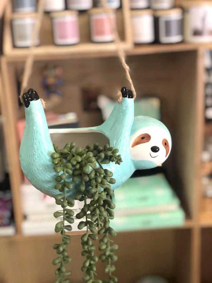 Quirky sloth hanging pot from Roma Gifts Geraldton