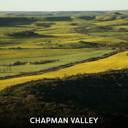 Chapman Valley
