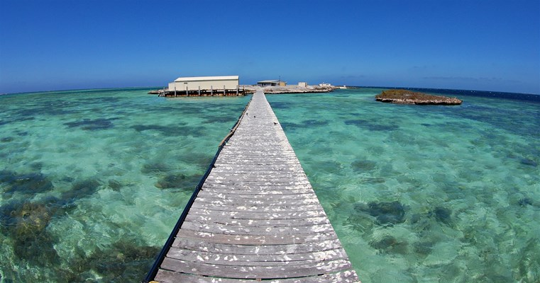 Eco Abrolhos Cruises - The iconic wharf at Coronation Island