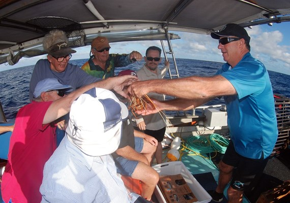 Eco Abrolhos Cruises - Eco Cray Poy Pull (4)