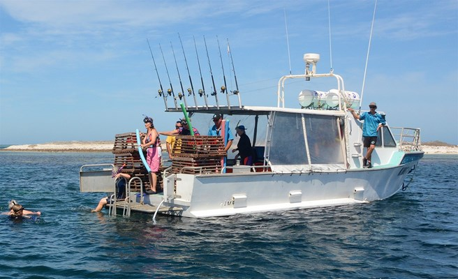Eco Abrolhos Cruises - The King Diver