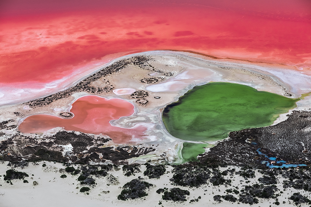Chinese photographers showcase Coral Coast in exhibition